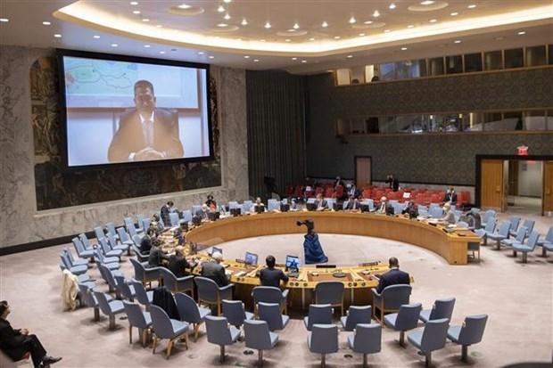 越南与联合国安理会:越南和印度尼西亚呼吁国际社会支持大湖区 hinh anh 1