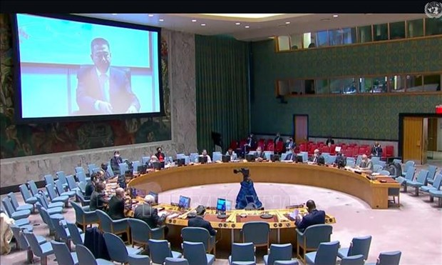 越南与联合国安理会:越南呼吁有关各方尊重有关西撒哈拉问题的各项协议 hinh anh 1