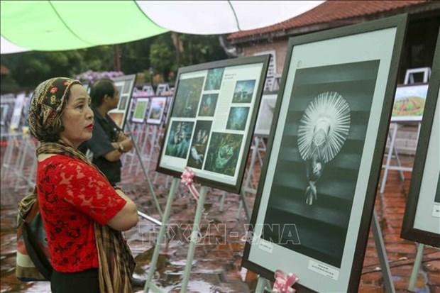 2020年越南艺术摄影大赛结果出炉 hinh anh 2