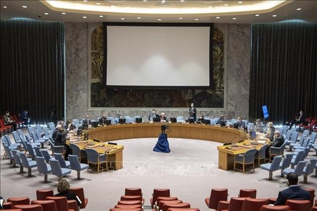 越南代表呼吁也门冲突各方应停止军事行动并恢复谈判进程 hinh anh 1
