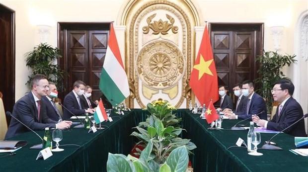 越南与匈牙利两国外长举行会谈 hinh anh 2