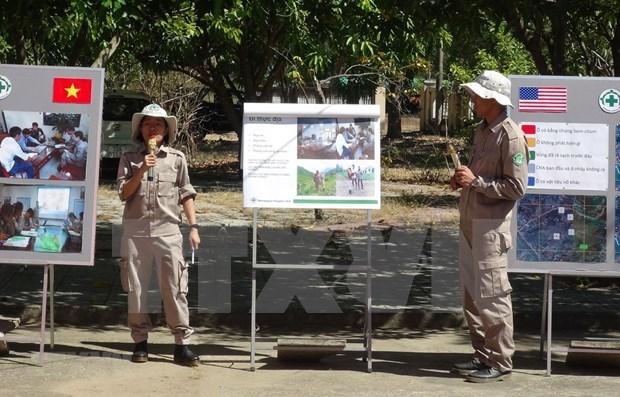 越南和平之树组织对越南各项活动起到积极的作用 hinh anh 1