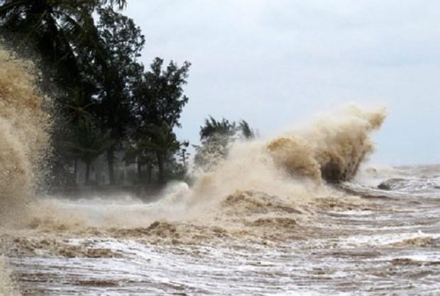 第八号台风距离黄沙群岛190公里 向广平、广治省方向移动 hinh anh 1