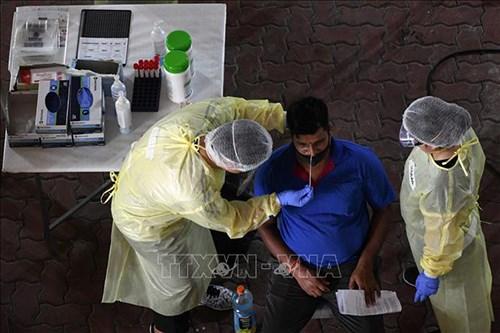 新加坡成功研发了一种在一分钟内检测出新冠病毒的呼吸测试 hinh anh 1