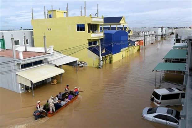 柬埔寨洪涝灾害已致39人死亡 受灾群众近50万 hinh anh 1