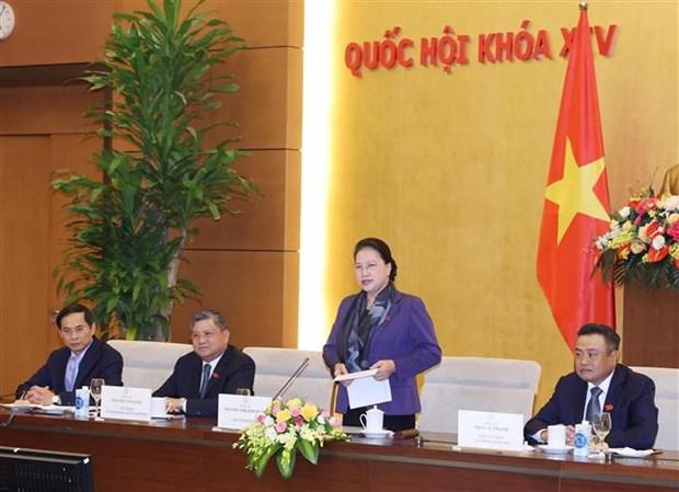 国会主席阮氏金银会见越南驻外大使和代表机构首席代表 hinh anh 2