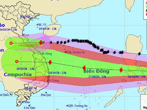 政府总理阮春福:全力做好第九号台风防范应对工作 把人员和财产转移到安全地带 hinh anh 2
