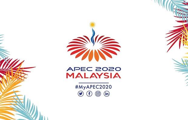 马来西亚将于11月份以视频方式举办召开亚太经合组织领导人会议 hinh anh 1