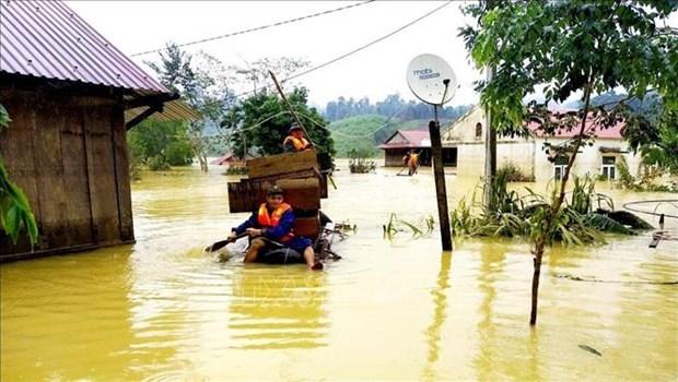 各国际组织为越南中部受灾群众撑起爱心伞 hinh anh 2