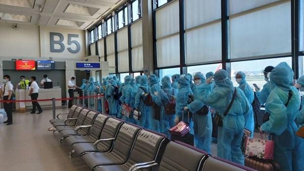 将在中国台湾的近230名越南公民接回国 hinh anh 1