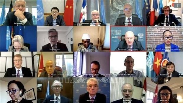 越南与联合国安理会:越南呼吁国际社会协助叙利亚应对新冠肺炎疫情 hinh anh 1