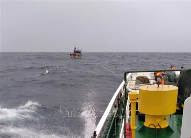 平定省26名渔民失踪事件:在海上遇险的3名渔民成功获救 hinh anh 1