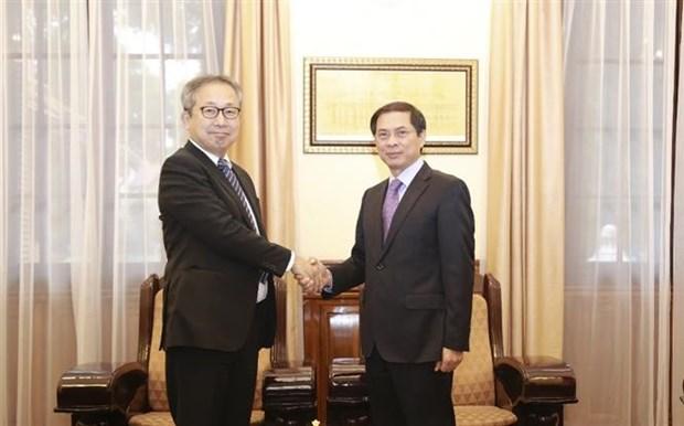 促进越南与日本深广战略伙伴关系 hinh anh 1