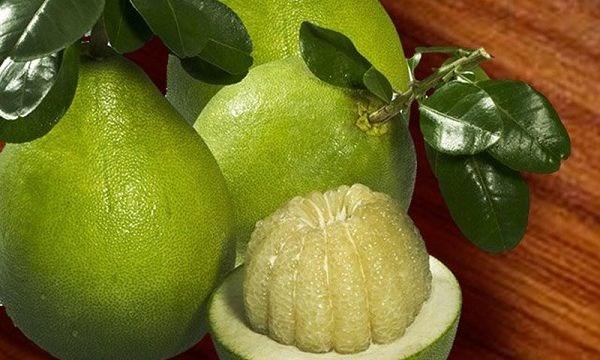 智利同意为越南柚子开放市场 hinh anh 1
