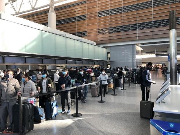将近700名越南公民从美国、日本和俄罗斯接回国 hinh anh 1