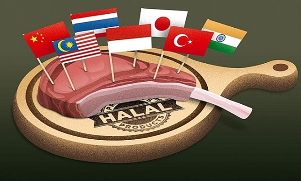 印度尼西亚增加对伊斯兰会议组织成员国的出口 hinh anh 1
