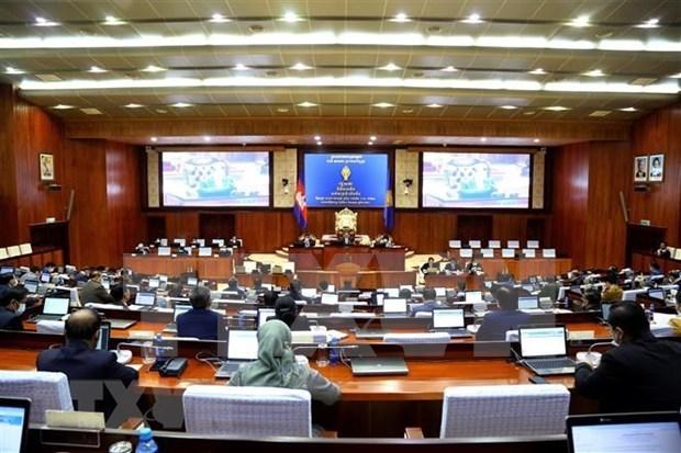 柬越陆地边界勘界立碑工作议定书获柬埔寨国会通过 hinh anh 2
