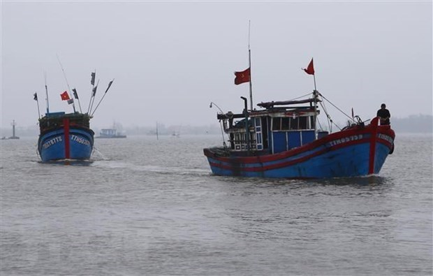 """""""东盟与中国关于促进合作对渔民给予公平和人道待遇""""研讨会在河内举行 hinh anh 2"""