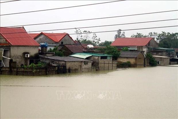 荷兰政府为越南中部开展灾后重建工作提供200万欧元援助 hinh anh 1