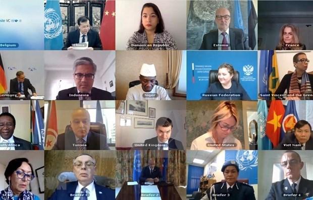 越南和联合国安理会:越南强调全面落实《禁止化学武器公约》的重要性 hinh anh 1