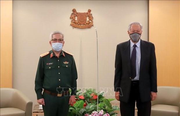 第11次越南和新加坡国防部防务政策对话在新加坡举行 hinh anh 1