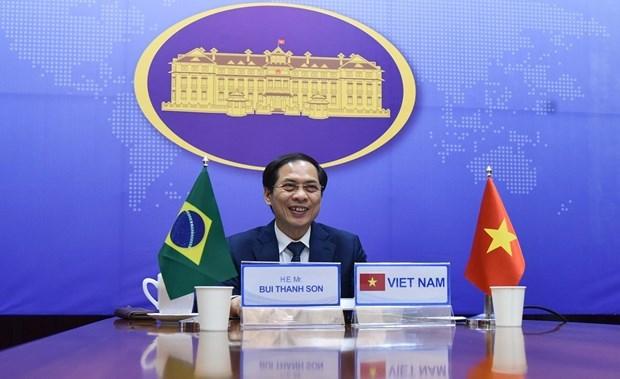 第7次越巴外交部副部长级政治磋商以视频方式举行 hinh anh 1