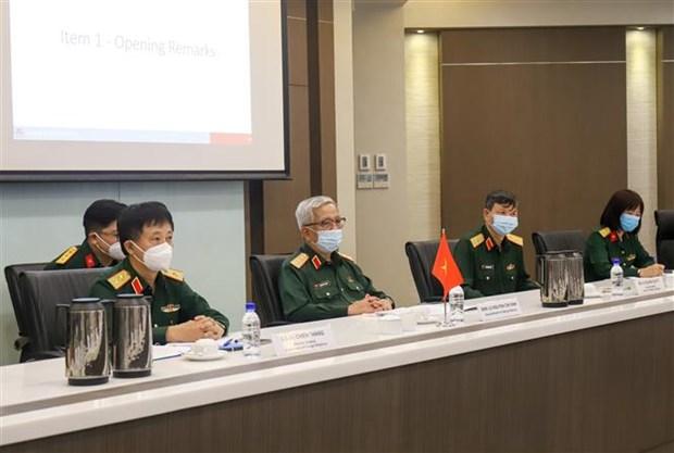 第11次越南和新加坡国防部防务政策对话在新加坡举行 hinh anh 2