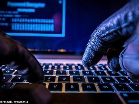 2020年10月越南共发生近600起网络攻击事件 hinh anh 1