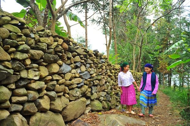 岩石围栏—河江省赫蒙族独特建筑 hinh anh 2