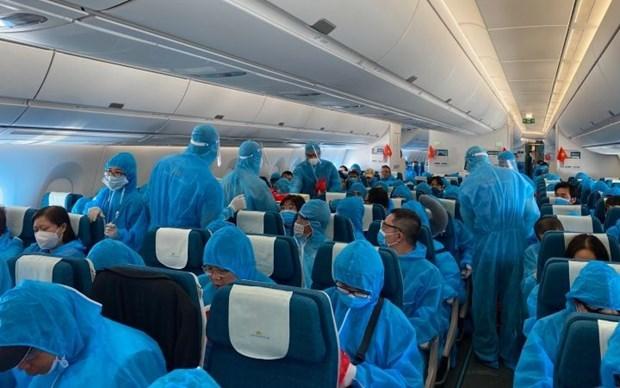 新冠肺炎疫情:将在德国和罗马尼亚的340余名越南公民接回国 hinh anh 1