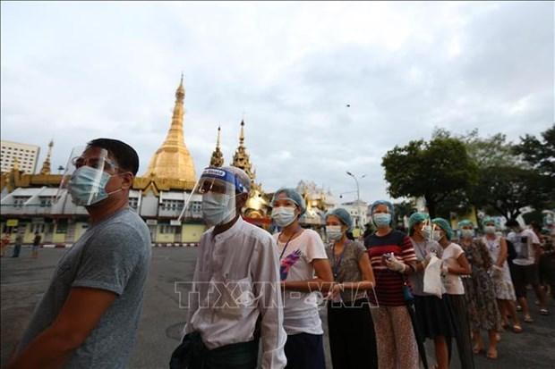 缅甸今日举行联邦议会选举 hinh anh 1
