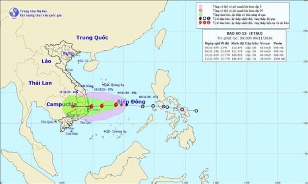 受第十二号台风影响 今日下午广治至庆和一带遭大雨袭击 hinh anh 1