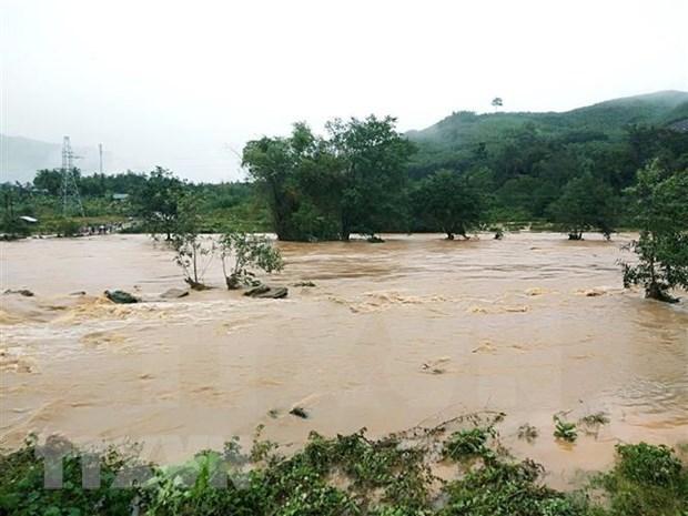ADB批准2500万美元贷款 支持越南应对自然灾害 hinh anh 1