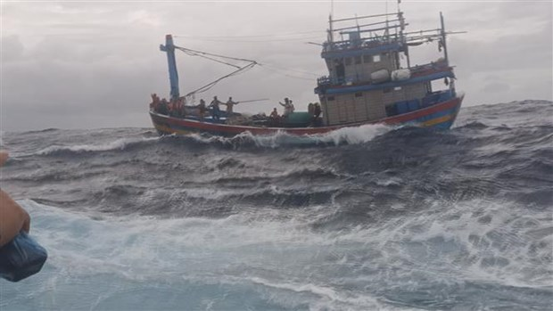 渔检船及时营救平定省一艘渔船和十多名渔民 hinh anh 1
