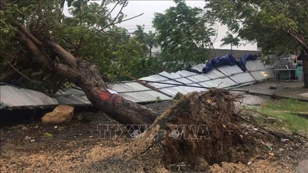 第12号台风致2人死亡 多地遭受财产损失 hinh anh 1