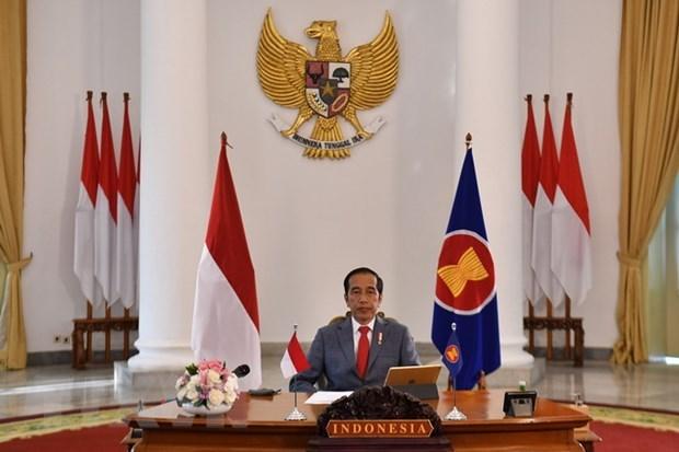 ASEAN 2020:印尼总统欢迎东盟旅游走廊的协议 hinh anh 1