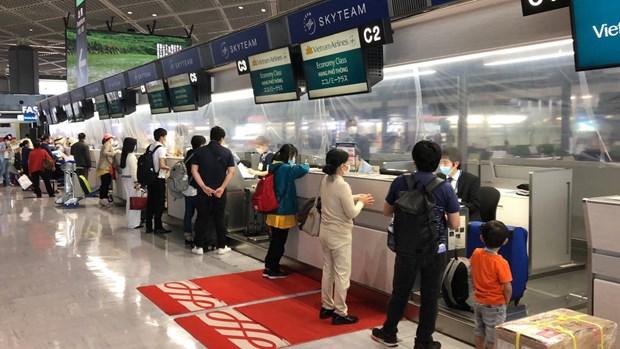 将在日本的340名越南公民接回国 hinh anh 1