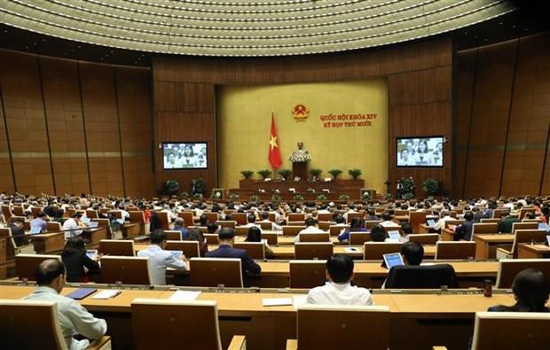越南第十四届国会第十次会议讨论《禁毒法》(修正案) hinh anh 1