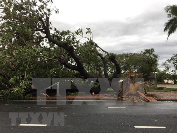 第13号台风袭击 越南中部地区损失严重 hinh anh 1
