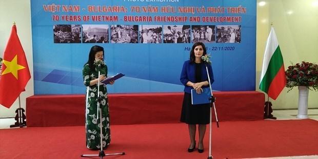 保加利亚驻越南大使佩特科娃:我钦佩越南人的活力和力量 hinh anh 1