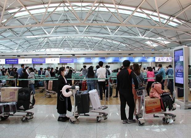 新冠肺炎疫情:将在韩国和日本的近700名越南公民接回国 hinh anh 1