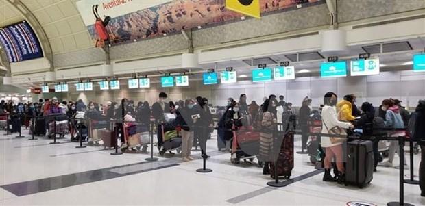 将在加拿大近350名越南公民接回国 hinh anh 1