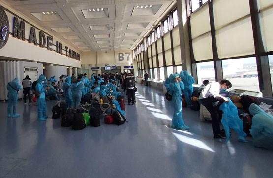将在中国台湾240余名越南公民接回国 hinh anh 1