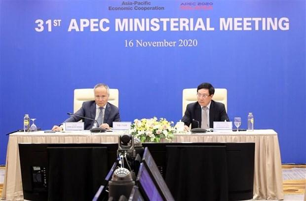 政府副总理兼外交部长范平明出席亚太经合组织第31届部长级会议 hinh anh 1