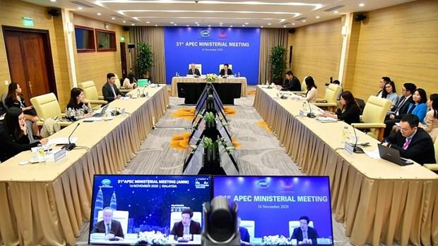 政府副总理兼外交部长范平明出席亚太经合组织第31届部长级会议 hinh anh 2