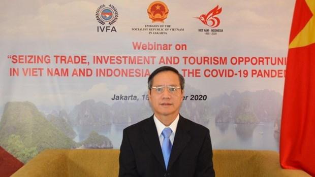 越南与印尼在新冠肺炎疫情背景下促进经济合作 hinh anh 1