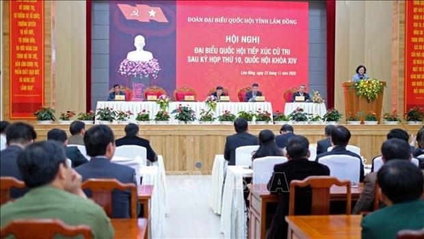 越共中央民运部部长张氏梅在林同省开展接待选民活动 hinh anh 1