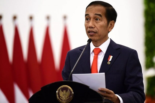 20国集团峰会:印尼呼吁各国援助发展中国家实现复苏 hinh anh 1