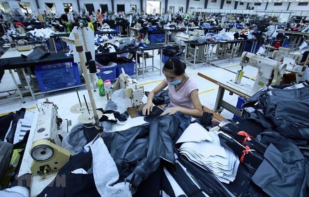 越南纺织品服装对欧亚经济联盟出口过量将面临反倾销风险 hinh anh 1
