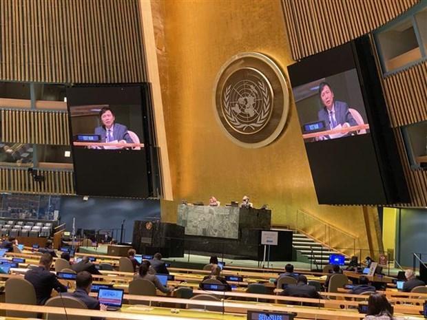 第75届联合国大会通过由越南提倡的东盟-联合国合作的决议 hinh anh 1